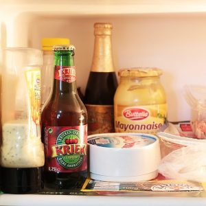 Contents of a Fridge